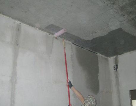 Обработка потолка антисептиком